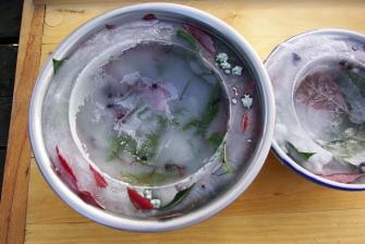 Ледяная чаша своими руками (7)