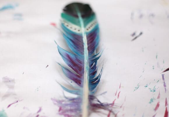 окрашенные перья узоры