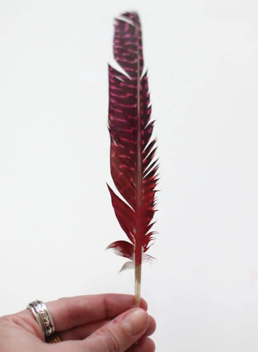 окрашенные перья (4)