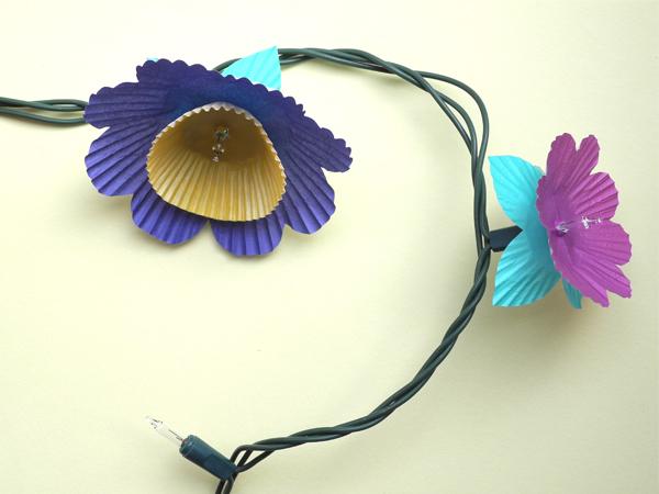 6flowers5