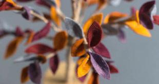Создаем дерево из разноцветного фетра